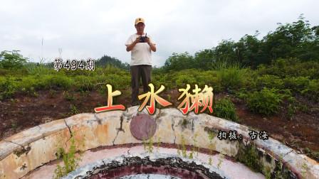 广东阳春范氏清代乾隆古墓上水獭