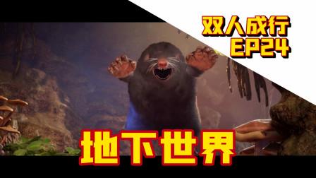 【菊长村长】双人成行 EP24 地下世界