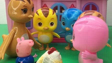 鸡妈妈的大公鸡也太厉害了,还把乔治给叨了,乔治要鸡妈妈做主!