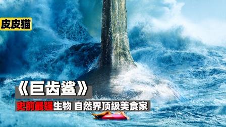 史前海洋霸主,自然界顶级美食家 《巨齿鲨》