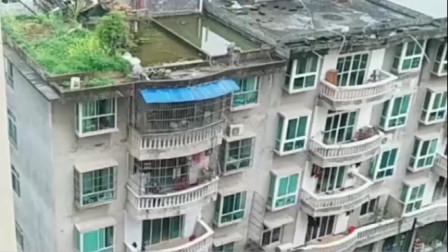 一边越南一边中国!这差距真是天壤之别!身在中国真好!