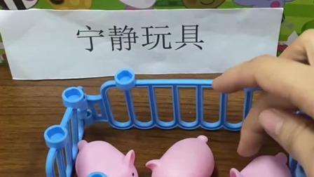 小猪们可以出来开心得不得了