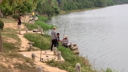 藏于广州增城的小村落,水质无敌堪比漓江,游玩露营钓鱼的好去处