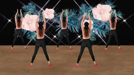 腰部练习广场舞《回家的路》