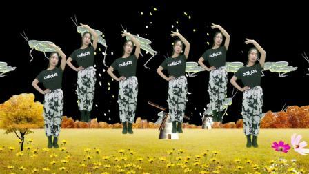 DJ广场舞《跳舞姑娘》歌词情深意浓,舞蹈优美