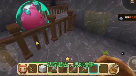 迷你世界:二狗子的母鸡生蛋真快,小鸡仔真是可爱啊