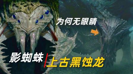 上古龙神黑蚀龙登场,怪物猎人6大巨兽详解,怪兽科普