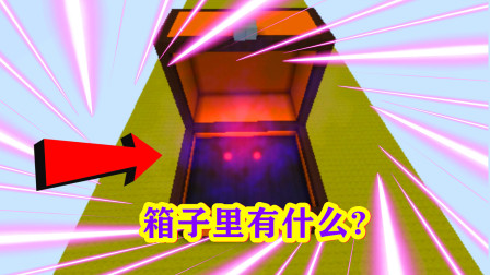 迷你世界:一个带眼睛的箱子,最后不知道怎么回事就结束了!