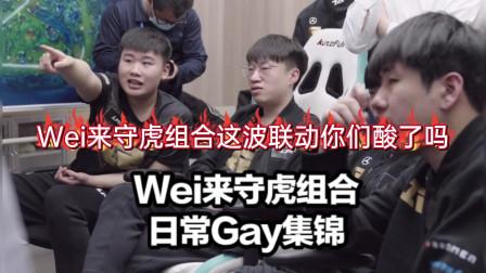 RNG最强上野后台联动花絮集锦:Wei含情脉脉看着虎哥,小虎采访评价Wei让粉丝泪目:想跟Wei打到退役为止