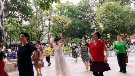 编舞zhanghongaaa:一晃就老了,16步,妙手杏林上传