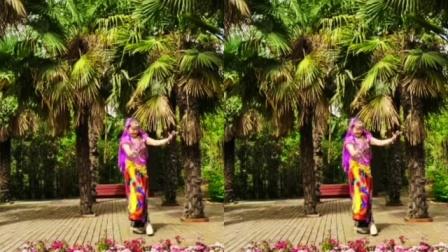 丽梦舞蹈队个人视频印度舞!