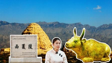 """西夏王陵出土""""大金牛"""",价值2亿人民币"""