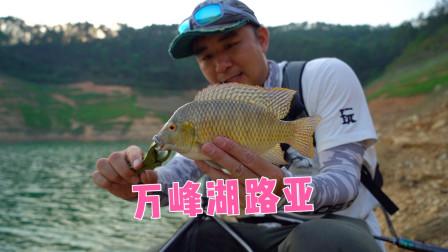 路亚人的天堂,贵州万峰湖自驾露营钓鱼