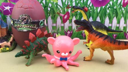 侏罗纪恐龙玩具,海底小纵队的积木扭蛋!