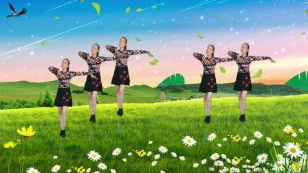 16步广场舞《爱的囚徒》,歌好听舞好看 简单好看又好学
