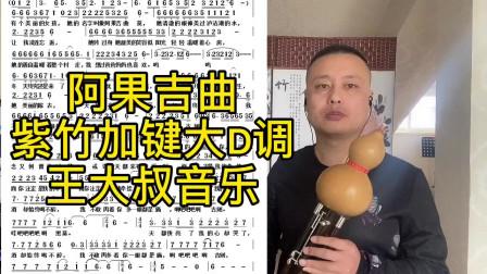 《阿果吉曲》紫竹加键葫芦丝小D调演奏,不改变原指法能吹高音