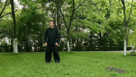 赵幼斌弟子吕炳松演练传统85式太极拳