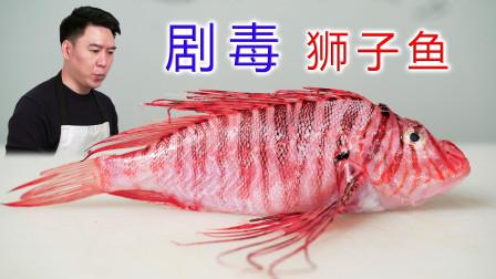 试吃剧毒狮子鱼,据说毒素能杀死一只鲨鱼,出锅后真香啊