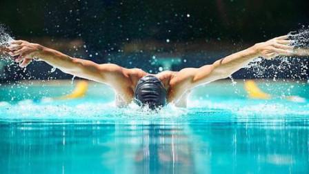 参加过奥运会的选手传授蝶泳技术