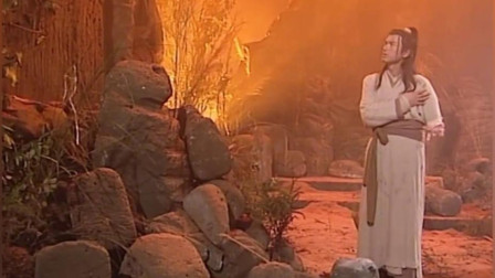 神雕侠侣:雕兄细心照料杨过,又带他去看了独孤前辈的埋身之所
