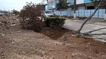 春天正是万物复苏的大好时光,是谁挖倒了这么多的树?