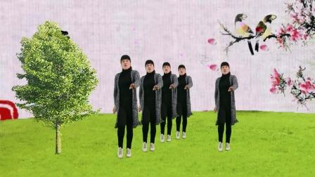 DJ广场舞《人生一世不容易》,优美动听的旋律,简单欢快的舞步