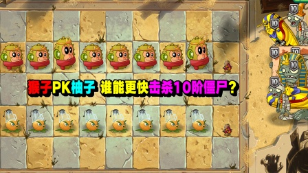 猴子PK柚子,谁能更快击杀10阶僵尸?