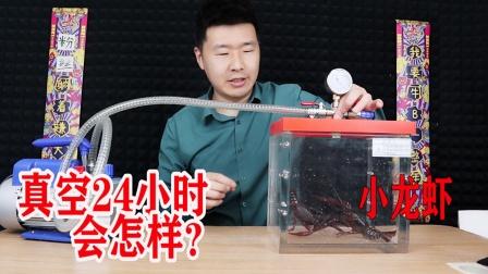 把小龙虾放入真空中24小时会怎样