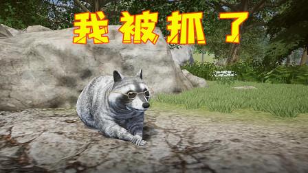 浣熊模拟器!我变成一只可爱的小浣熊,结果却被人类抓了起来