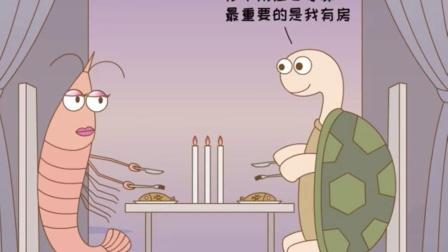 乌龟相亲遇到一个极品