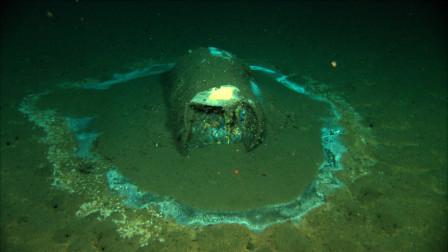 美国科学家在加州外海发现逾2万桶有毒废弃物