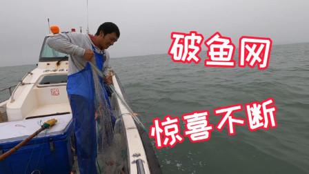 出海钓鱼意外捡到鱼网,各种海货起了一大堆,煮一锅螃蟹吃撑了