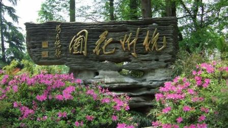 西子湖畔杭州花圃,月季盛开惊喜游客