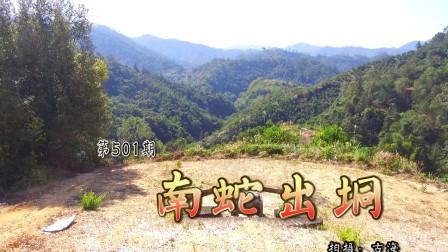 带你去看广东信宜梁氏南蛇出垌