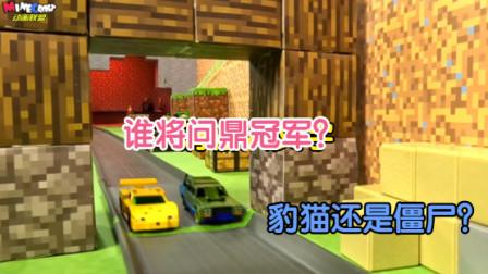 MC生物赛车锦标赛-决赛