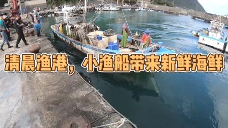清晨渔港,小渔船带来新鲜海鲜!