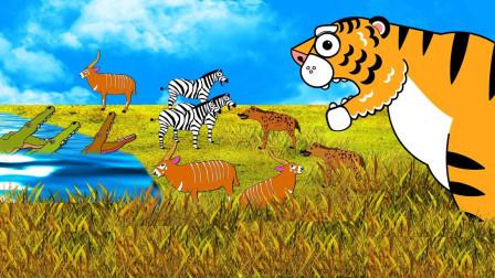 森林里的大老虎寻找美味的肉