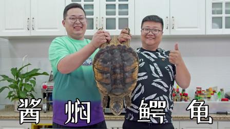 """半吨家做客,560买只养殖大鳄龟做""""酱焖鳄龟""""肉质嫩而不柴"""