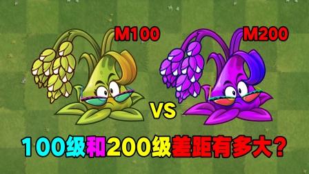 100级糯米和200级糯米差距有多大?
