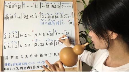 《真的好想你》八孔葫芦丝教学,如何加入技巧,吹出韵味