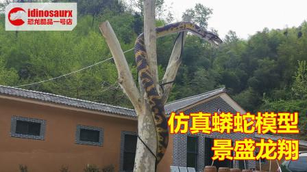 仿真雨林蟒蛇模型 - 10米长的雨林动物展品