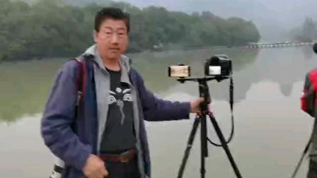 在浙江缙云仙都拍水牛过石桥照片
