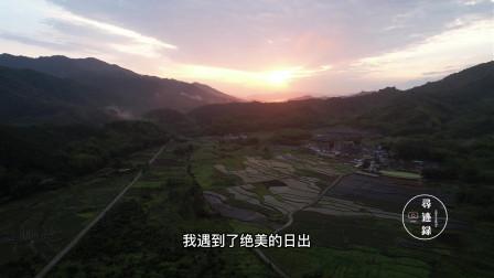 广东惠州见龙围,600年的古树远近闻名,器子型的炮楼堪称一绝!