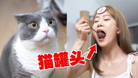 我的猫偷吃我东西!于是我也吃了它的