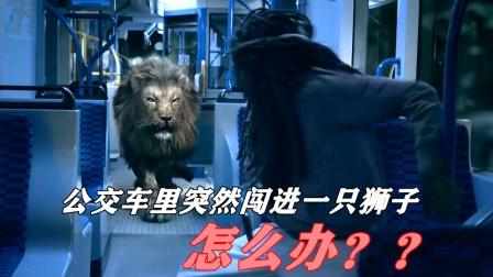 公交车里突然跑进一只狮子,怎么办?
