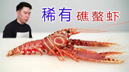 第一次见这么漂亮的龙虾,西方礁螯虾,超级无敌好吃