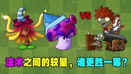 法术植物的较量:金缕梅女巫VS孢子菇!