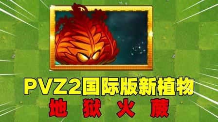 爆料:PVZ2国际版新植物来袭?地狱火蕨!