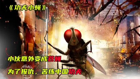 小伙意外变成苍蝇,为了报仇,苦练中国功夫