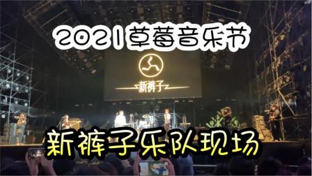 上海草莓音乐节现场,新裤子乐队演唱《别再问我什么是迪斯科》
